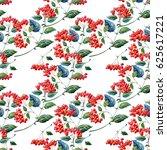 hawthorn berries. medicinal... | Shutterstock . vector #625617221