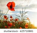 red poppy flower in a field ... | Shutterstock . vector #625710881