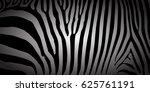 stripe animal jungle texture... | Shutterstock .eps vector #625761191