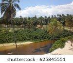Punau Tropical Lagoon With Pal...