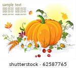 vector floral background with... | Shutterstock .eps vector #62587765