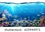 Underwater Scene With Reef And...