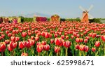 windmill around tulips at... | Shutterstock . vector #625998671