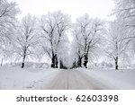 Avenue in winter with trees covered in rime frost - stock photo