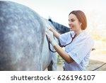 veterinarian examining horse.... | Shutterstock . vector #626196107