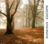 autumn landscape | Shutterstock . vector #62623696