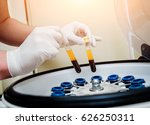 platelet rich plasma... | Shutterstock . vector #626250311