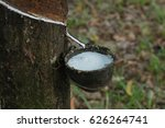 the image of the rubber... | Shutterstock . vector #626264741