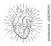hand drawn vector illustration... | Shutterstock .eps vector #626294141