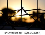 bright blur sunlight through... | Shutterstock . vector #626303354