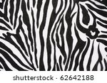 zebra print useful as a... | Shutterstock . vector #62642188