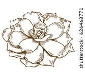 vector antique engraving... | Shutterstock .eps vector #626468771