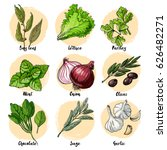 herbs. spices. italian herb... | Shutterstock .eps vector #626482271