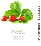 red strawberry fruits with... | Shutterstock . vector #62651689