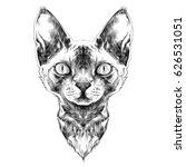 cat breed sphynx face sketch... | Shutterstock .eps vector #626531051
