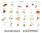spices vector set | Shutterstock .eps vector #626539004