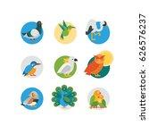 bird icon set   flat  eps 8 no... | Shutterstock .eps vector #626576237