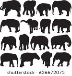 asian elephant silhouette... | Shutterstock .eps vector #626672075