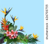 tropical exotic flowers and... | Shutterstock .eps vector #626703755