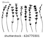 lavender flowers hand drawn... | Shutterstock .eps vector #626770301