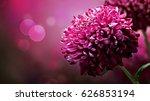 beautiful flowers wallpaper  ... | Shutterstock . vector #626853194