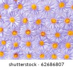 background of small purple... | Shutterstock . vector #62686807