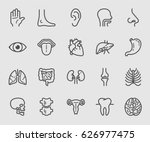 anatomy and organ line icon | Shutterstock .eps vector #626977475