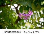 flower | Shutterstock . vector #627171791