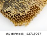 honeycomb isolated on a white... | Shutterstock . vector #62719087