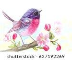 watercolor illustration  bird...   Shutterstock . vector #627192269