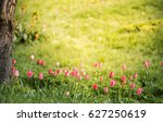 an amazing vibrant field of... | Shutterstock . vector #627250619