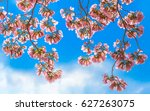 angle view from below of pink... | Shutterstock . vector #627263075