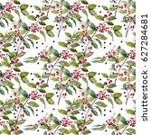 elderberry. medicinal plant of... | Shutterstock . vector #627284681