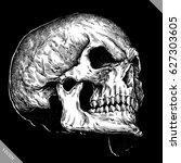 engrave isolated human skull... | Shutterstock .eps vector #627303605
