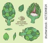 collection of artichoke. hand... | Shutterstock .eps vector #627334814