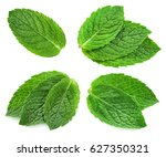 fresh mint collection isolated... | Shutterstock . vector #627350321