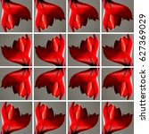 Small photo of Background made of gray square shapes each filled with one red Amaryllis flower