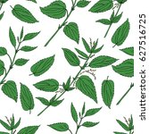 Seamless Floral Pattern  Nettl...