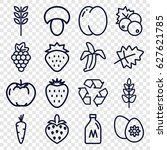 Set Of 16 Organic Outline...