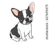 vector illustration of cute...   Shutterstock .eps vector #627655475