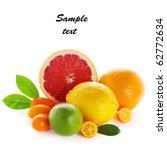 citrus fresh fruit isolated on... | Shutterstock . vector #62772634