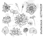 Stock vector set of lotus flower in different views bloomed buds and leaves hand drawn contour illustrations 627744539