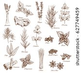 herbs or spices sketches of... | Shutterstock .eps vector #627749459