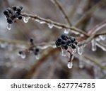 Winter Wonderland  A Hike On A...