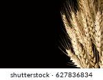 spikes on black backround | Shutterstock . vector #627836834