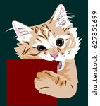 Portrait Of A Kitten Gnawing A...