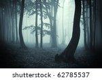 Tree Silhouettes In A Dark...