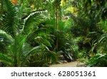 tropical park | Shutterstock . vector #628051361
