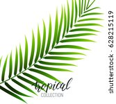 tropical palm leaf and... | Shutterstock .eps vector #628215119