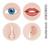 body parts eye  ear  nose  lip... | Shutterstock .eps vector #628238051